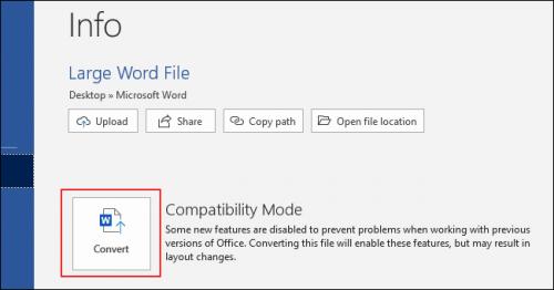 Microsoft Word Info