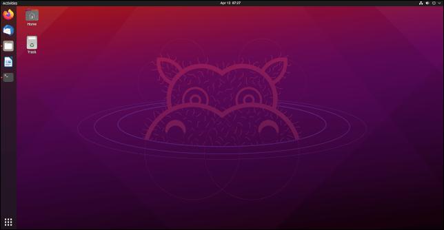 ubuntu hirsute hippopo